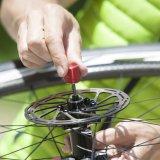 Fahrradzubehör: Nicht ohne die Sieger in die Saison 2017