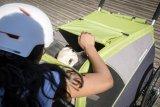 Ein Cabrio für Hunde: Im Hundeanhänger lässt es sich dank guter Belüftung nicht nur aushalten - man kriegt sogar richtig was mit von der Welt.