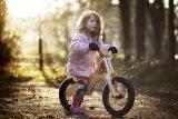 Auch mit Holz als Rahmenmaterial lassen sich schicke und funktionale Laufräder bauen.