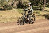 Gerade vollgefederte E-Bikes erlauben es, befestigte Wege auch einmal zu verlassen. Gilt natürlich auch ohne Motor.