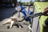Dank spezieller Achsen lassen sich Anhänger jetzt auch an Rädern mit Steckachsen montieren.