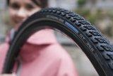Die Bildunterschrift wird in Bälde eingefügt. Sie können uns aber gern auch per E-Mail oder Telefon kontaktieren, wir helfen gerne weiter.Mountainbikes haben sich auch im Alltagseinsatz bestens bewährt.
