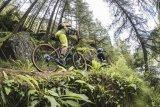 Schmale Trails mit reichlich Steigung forden volle Konzentration.