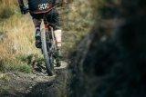 Mountainbike-Reifen haben meist offene, eher grobe Profile, die sich gut mit naturbelassenem Untergrund verzahnen.