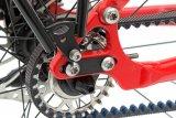 Die Firma Velotraum bietet ihren Kunden die Möglichkeit, sich ein Rad mit Zentralantrieb und Zahnriemen zusammenzustellen.