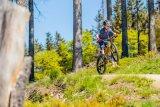 Was die Großen können, kann manch Bike-Nachwuchs auch - aber meist fehlt es am passenden Rad. Wenn das mal da ist, geht die Post ab!