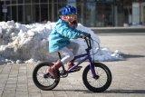 """Kommt aus der Halfpipe, ist für die Halfpipe: Das """"Seed 16"""" von Wethepeople ist ein BMX-Sportgerät für die ganz Kleinen - begeistert aber garantiert auch deren Eltern."""