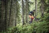 """Lange Berggaufpassagen sind das Gelände, in dem Mountainbikes mit Motorunterstützung wie dieses """"E-Sledge"""" von Stevens ihre Stärken voll ausspielen können."""