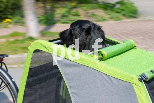 """Die Dachluke des """"Dog XL"""" sorgt für gutes Klima im Innenraum und für die Möglichkeit, den Kopf auch mal an die frische Luft zu bekommen, und damit für einen guten Überblick."""