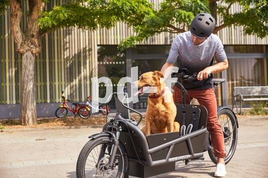 Isr das Lastrad gefedert, freut sich der Hund. Wenn er mitfahren darf. In jedem Fall freut sich der Mensch. Hier zudem über die elektrische Tretunterstützung.