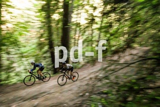 Gravel-Bikes bringen das Rennrad-Feeling in den Wald.