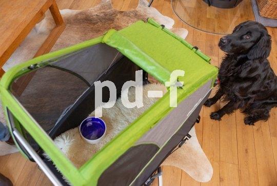 Schritt 3: Futter fassen im Anhänger. Damit der Hund lernt, auch eine längere Zeit im Anhänger zu verbringen, wird der Futterplatz in das Innere des Hängers verlegt.
