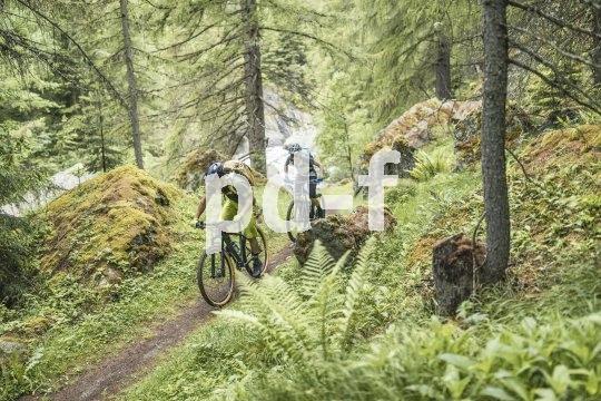 Viel Grün, viel Trail, viel Flow: Auch unterhalb der Baumgrenze gibt es beim Mountainbiken echte Gipfelerlebnisse...