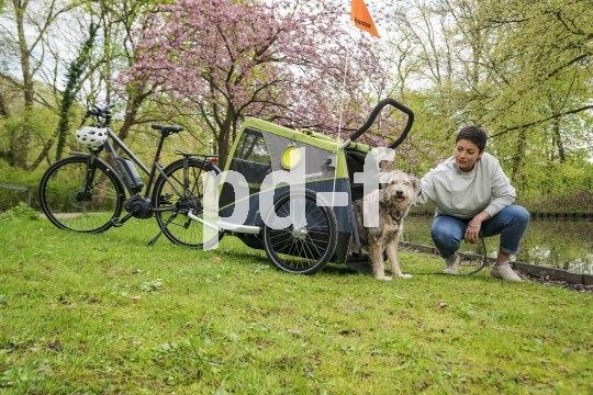"""Die Hundehütte als Transporter: Auch für große Hunde gibt es solche praktischen Lösungen, z.B. den """"Dog XL"""" von Anhängerspezialist Croozer."""