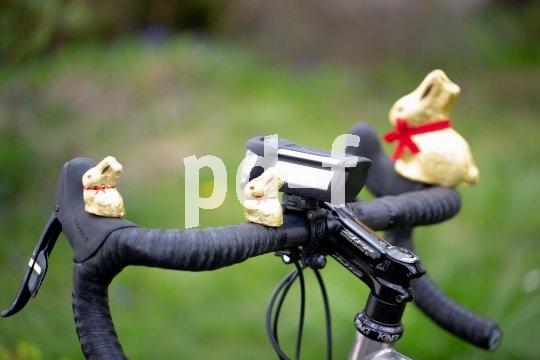 Mit einem guten Akku-Fahrradscheinwerfer kann man die Schoko-Osterhasen schon finden, wenn es für die Geschwister noch viel zu dunkel ist (Modell Ixon Space von Busch & Müller).