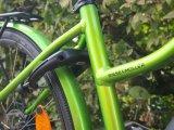 ...und es hat Klick gemacht. Wegfahren oder -rollen lässt sich das Rad jetzt nicht mehr. Und wenn es ein E-Bike ist, macht auch das Tragen nicht wirklich Freude. Ein echter Diebstahlschutz ist das aber natürlich nicht.