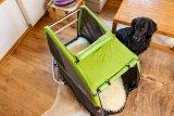 """Schritt 1: Um Ängste abzubauen, wird der Anhänger wie ein neues Möbelstück im Wohnraum und Nahbereich des Hundes platziert. """"So kann er ihn inspizieren und wird schnell vertraut mit ihm"""", beschreibt Anne Gereke."""
