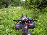So schnell wird die Mountainbike-Tour zum Abenteuer! Wer hier keine Machete zur Hand hat, kann im Grunde nur umkehren und sich einen anderen Weg durch den Forst suchen.