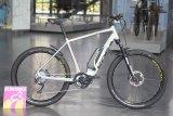 """Das """"Pace SX"""" von Koga ist als E-Bike für den städtischen Einsatz sowie für Feldwege und Schotterpisten konzipiert."""