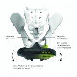 Bei diesem Sattel verformt sich der Kern mit der Tretbewegung. Dies soll für eine Entlastung der Sitzhöcker sorgen.