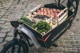 Das Cargobike ist eine hervorragende Alternative für den täglichen Einkauf.