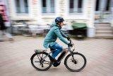 """Auch für den Einstieg in den E-Bike-Bereich gibt es Modelle mit sportlichem Motor und soliden Komponenten; hier das """"Yucatan 8"""" von Hersteller Winora."""