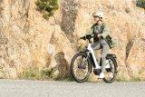 Wer klares Design und vielseitige Funktionalität auch beim E-Bike schätzt, wird sich gern mit diesem Modell auseinandersetzen: Nevo Vario, Hersteller Riese & Müller.