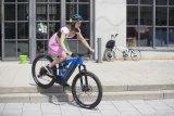 Ob E-MTB oder E-Faltrad: Es gibt mittlerweile fast jede Fahrradgattung auch elektrifiziert.