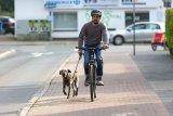 Den Hund vom Rad aus zu führen ist nicht ohne Risiko. Ohnehin gehören beide Hände an den Lenker. Die Leine kann dann eine spezielle flexible Halterung, die sich am Hinterbau anbringen lässt. So bleiben plötzliche Bewegungen des Hundes weitgehend ohne Auswirkung auf das Fahrverhalten.