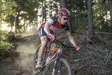 Mountainbiken pur: mit einem leichten Carbon-Hardtail einen schönen Trail entlang durch den Wald. So kann´s bleiben.