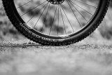 Zu den wichtigsten Eigenschaften eines Fahrradreifens zählen Grip und Pannensicherheit.