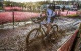 """Beim Cyclocross kommen Rennräder zum Einsatz, die mehr als nur Asphalt """"können"""". Das gleiche gilt natürlich für die Fahrerinnen und Fahrer."""