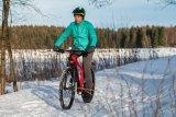 Bei schwierigen Bedingungen spielt ein Mountainbike seine Stärken aus. Mit Radschützern und Akkubeleuchtung wird es im Handumdrehen zum Winter-Alltagsrad.