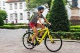 Aufgeräumt, schick und schnell - das flinke Rad für alles und die Stadt ist nach wie vor ein Dauerläufer.
