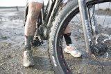Wattwanderung mit dem Mountainbike? Kein Problem, wenn es mit vier Zoll breiten Reifen ausgestattet ist.