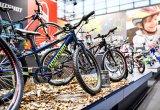 Kinder-Mountainbikes helfen beim Einstieg in den Radsport und schauen auch noch cool aus.