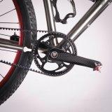 Der Riemenantrieb hat sich als Antriebsalternative zur Fahrradkette am Markt etabliert.