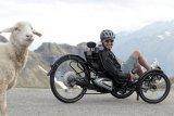 Mit elektrischem Zusatzantrieb wird das Trike noch reisetauglicher - auch und gerade, wenn es in die Berge geht.