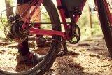Der Riemenantrieb lässt sich leicht säubern und genießt bei Reiseradfahrern deshalb eine hohe Popularität.